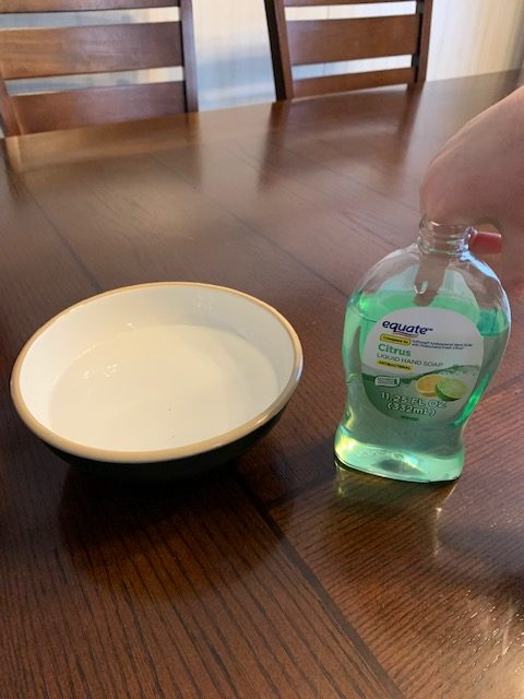 Sanity Savers: Making Germs Scatter