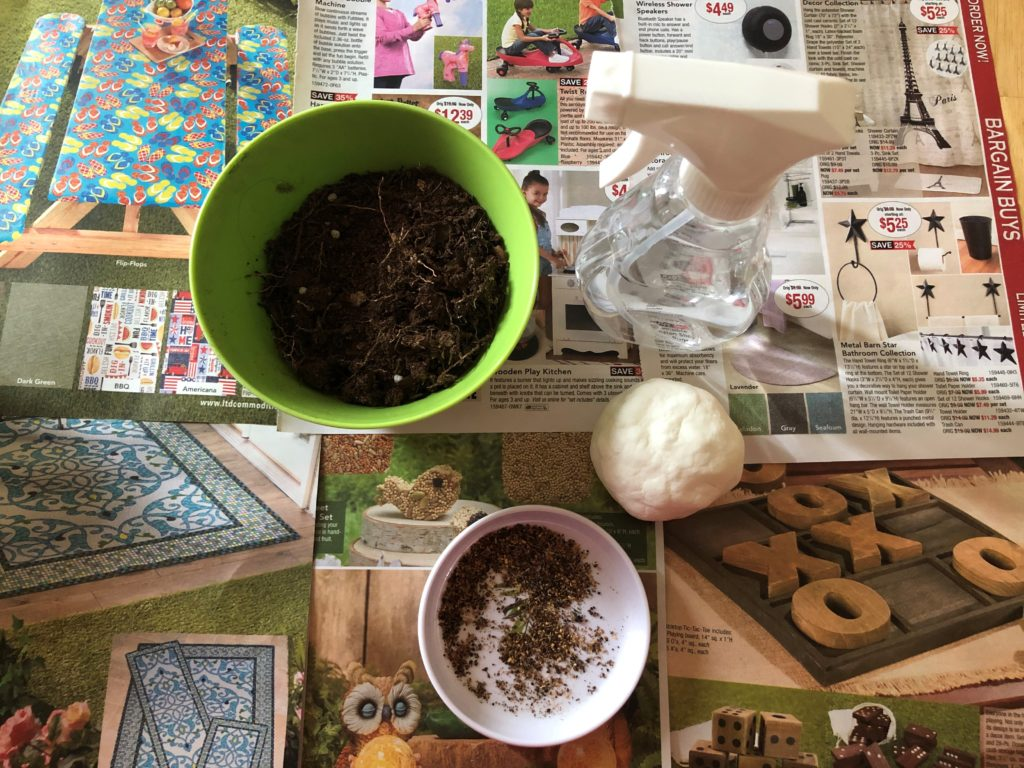 Sanity Savers: Seed Bombs